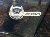 Ford F150 V8 Prins VSI: Emblem